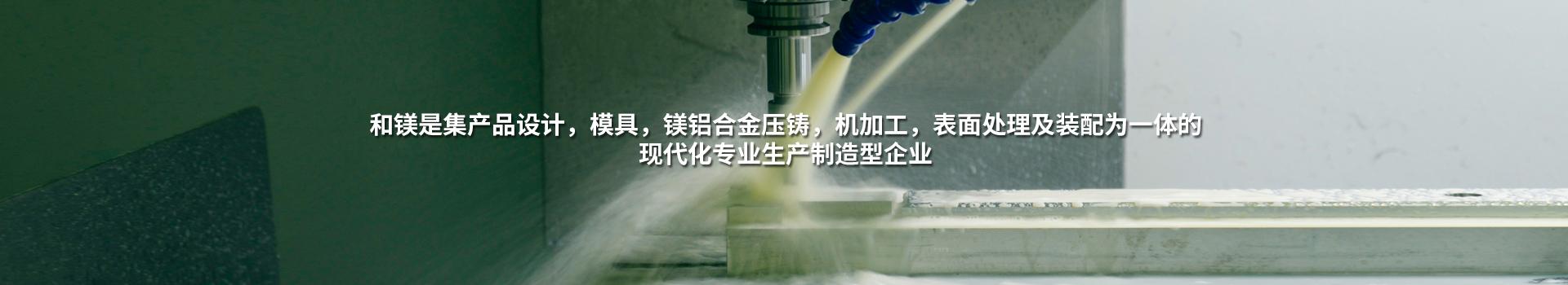 镁合金压铸